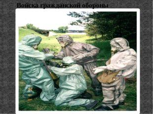 Поисково-спасательная служба МЧС России Поисково-спасательной службы в России