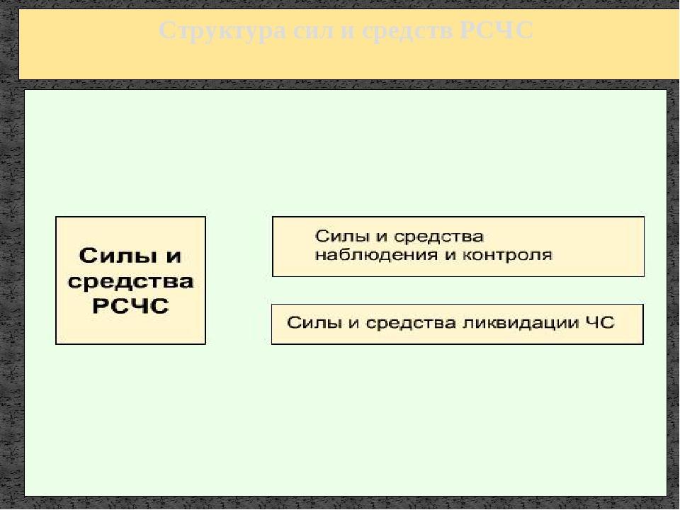 К силам и средствам ликвидации чрезвычайных ситуаций РСЧС относят: войска гра...