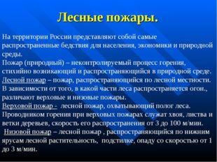Лесные пожары. На территории России представляют собой самые распространенные