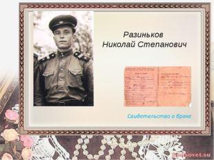 Разиньков Николай Степанович