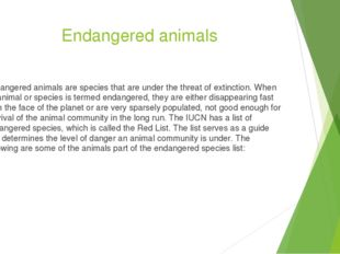 Endangered animals Endangered animals are species that are under the threat