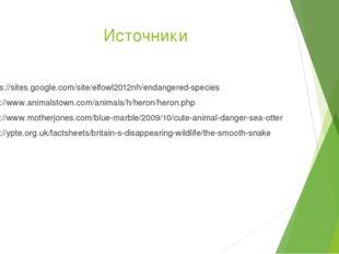 Источники https://sites.google.com/site/elfowl2012nh/endangered-species http