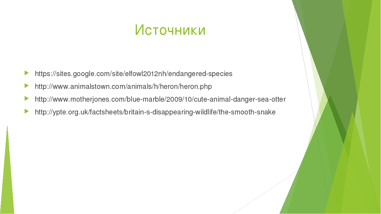 Источники https://sites.google.com/site/elfowl2012nh/endangered-species http...