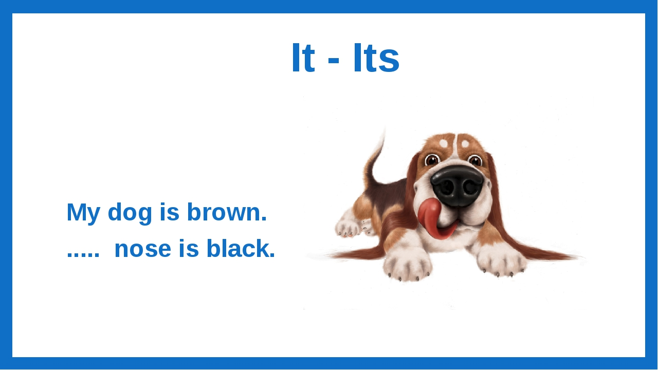 It - Its My dog is brown. ..... nose is black.
