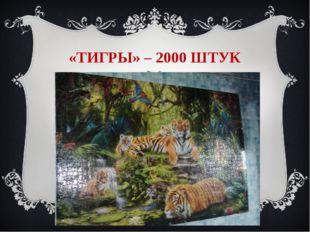 «ТИГРЫ» – 2000 ШТУК II-ой Всероссийский интернет - конкурс мультимедийных тех