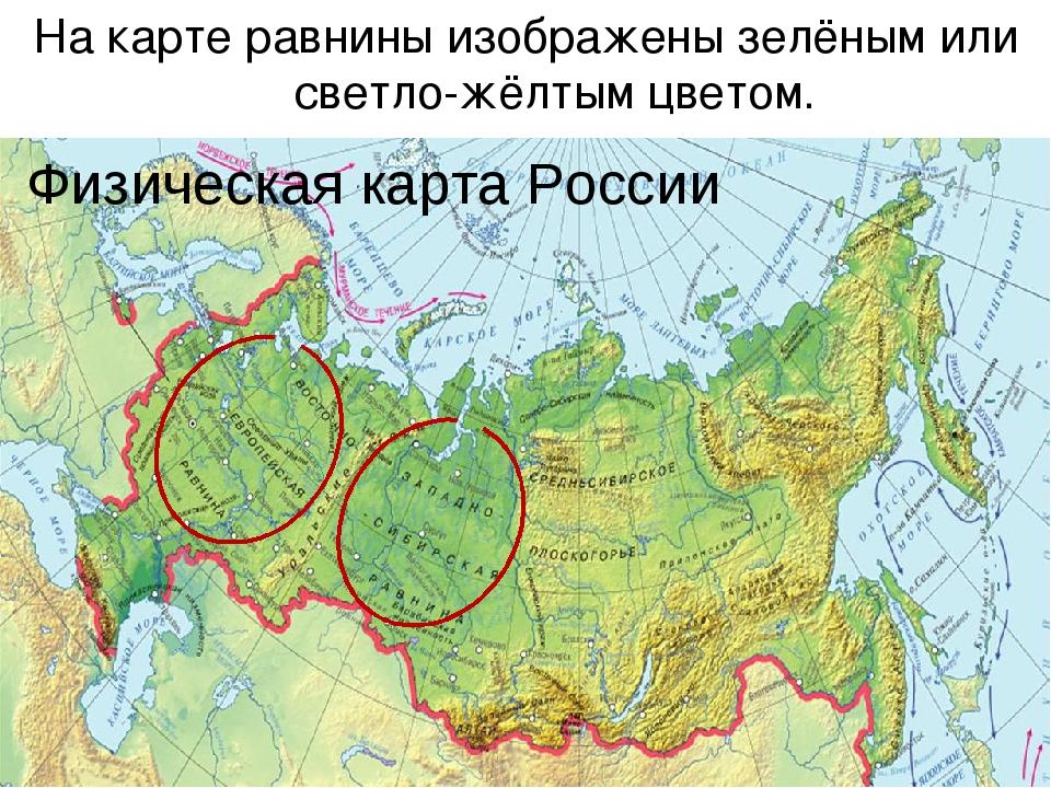 Физическая карта России На карте равнины изображены зелёным или светло-жёлты...