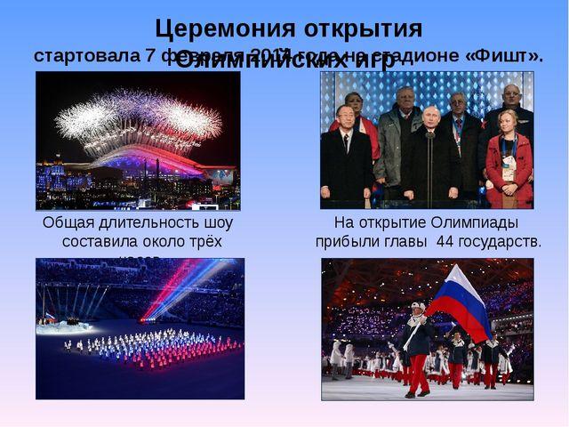 Церемония открытия Олимпийских игр стартовала 7 февраля 2014 года на стадионе...