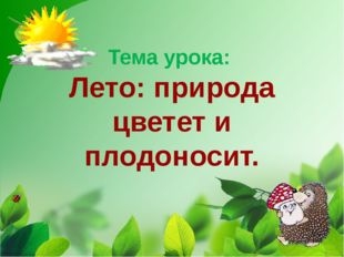Тема урока: Лето: природа цветет и плодоносит.