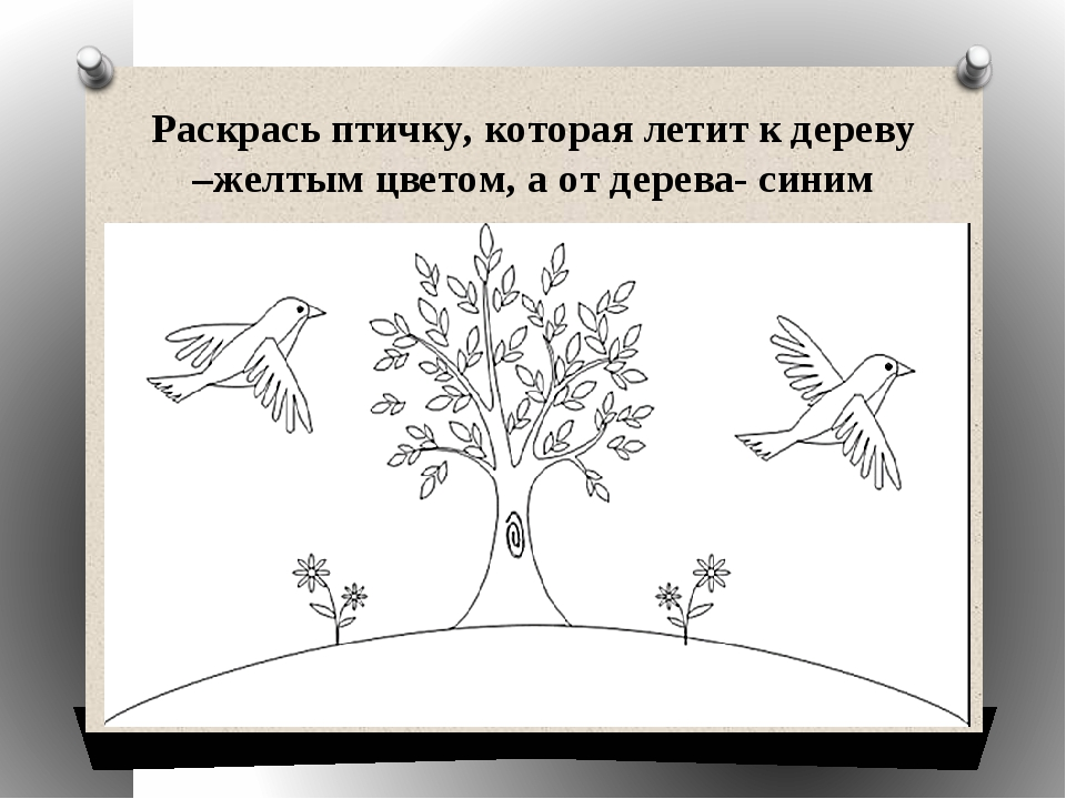 Раскрась птичку, которая летит к дереву –желтым цветом, а от дерева- синим