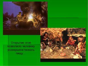 Открытие огня позволило человеку усовершенствовать пищу…