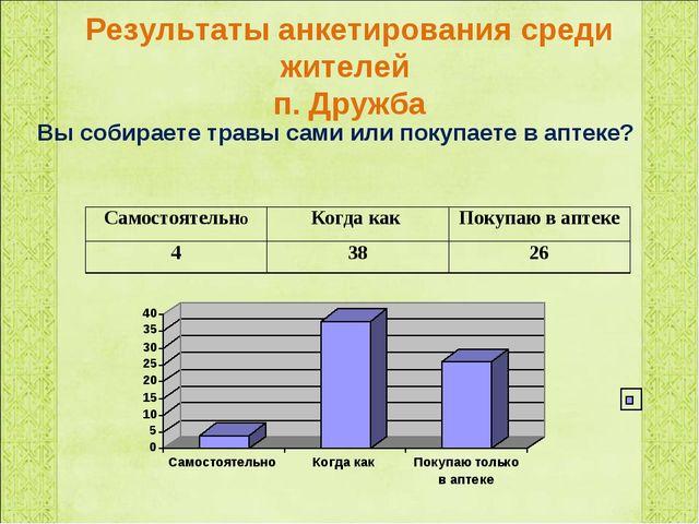 Результаты анкетирования среди жителей п. Дружба Вы собираете травы сами или...