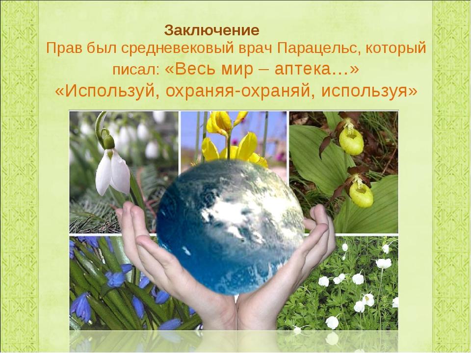 Прав был средневековый врач Парацельс, который писал: «Весь мир – аптека…» «И...