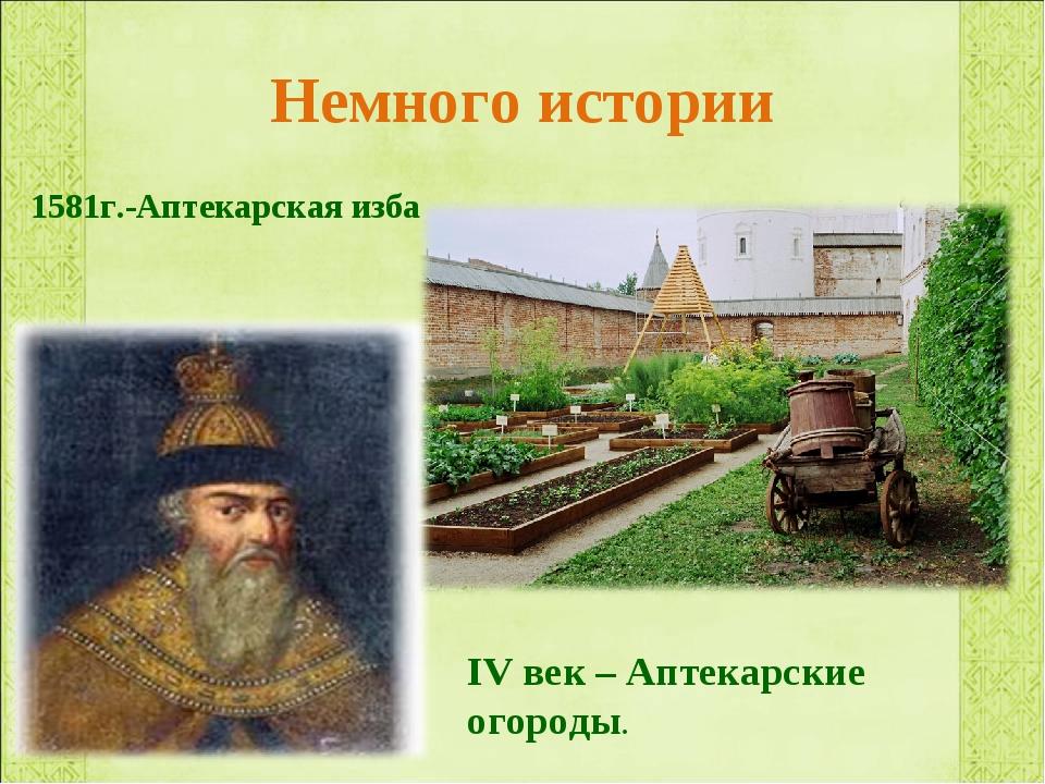 Немного истории 1581г.-Аптекарская изба IV век – Аптекарские огороды.