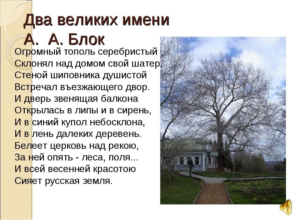 Два великих имени А. А. Блок Огромный тополь серебристый Склонял над домом св...