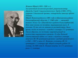 Жакаев Ибрай (1891–1981 гг.) Заслуженный казахский рисовод, рационализатор.