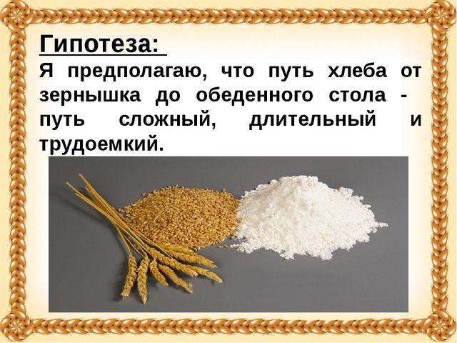 Гипотеза: Я предполагаю, что путь хлеба от зернышка до обеденного стола - пут...