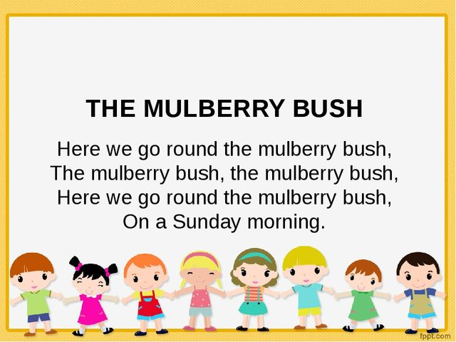 THE MULBERRY BUSH Here we go round the mulberry bush, The mulberry bush, the...