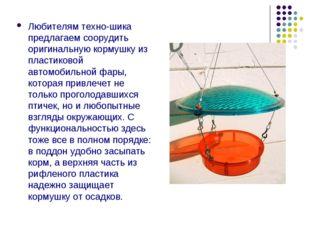 Любителям техно-шика предлагаем соорудить оригинальную кормушку из пластиково