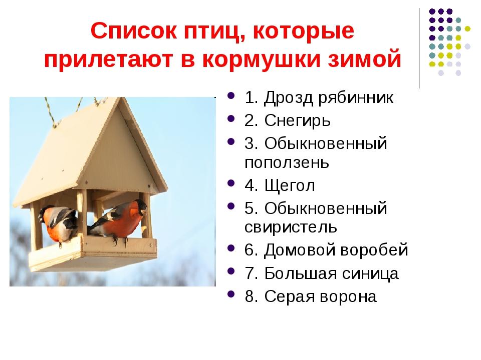 Список птиц, которые прилетают в кормушки зимой 1. Дрозд рябинник 2. Снегирь...