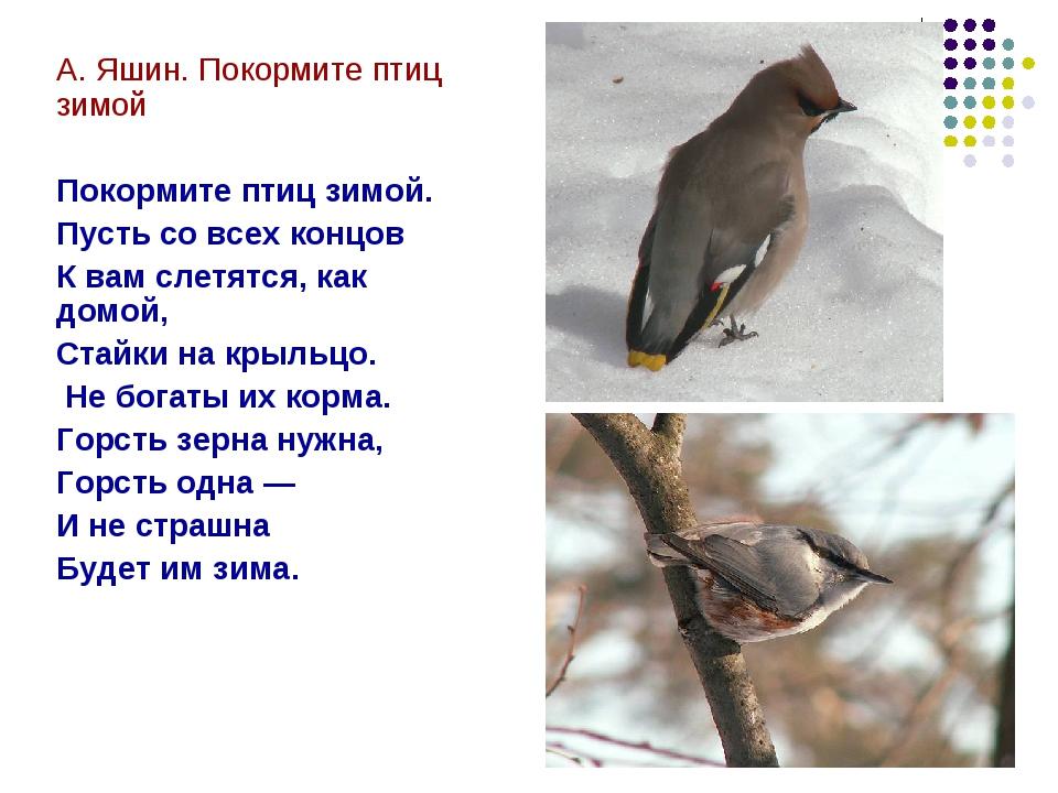 А. Яшин. Покормите птиц зимой Покормите птиц зимой. Пусть со всех концов К ва...