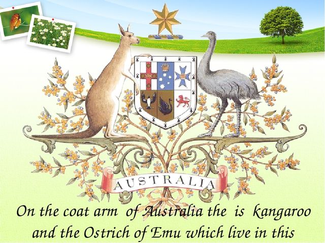 On the coat arm of Australia the is kangaroo and the Ostrich of Emu which liv...