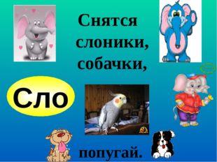 Снятся слоники,собачки, Сло попугай.