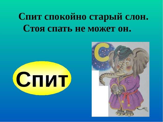Спит спокойно старый слон. Стоя спать не может он. Спит