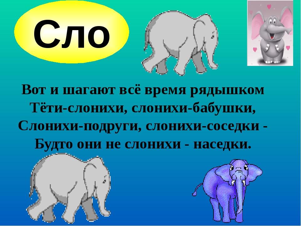 Вот и шагают всё время рядышком Тёти-слонихи, слонихи-бабушки, Слонихи-подру...