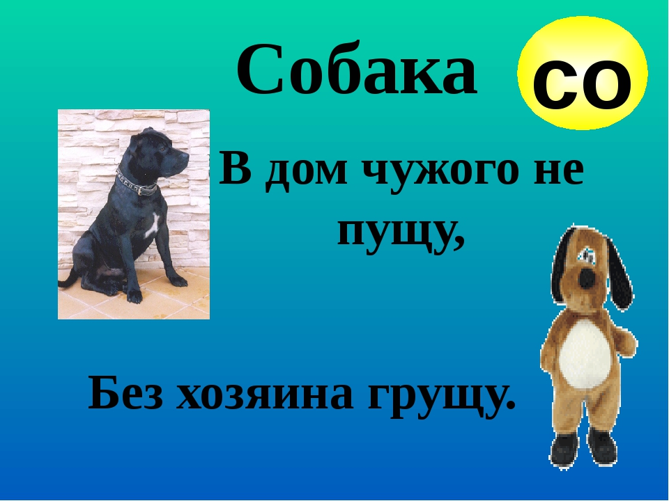 Собака со В дом чужого не пущу, Без хозяина грущу.
