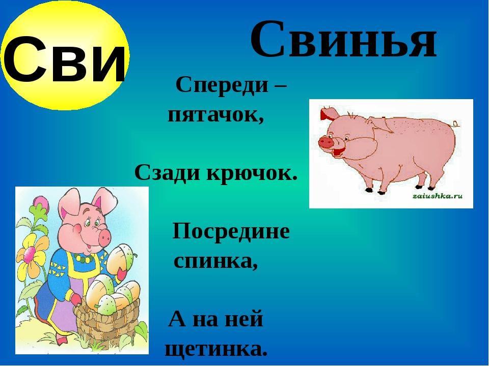 Свинья Спереди – пятачок, Сзади крючок.   ...