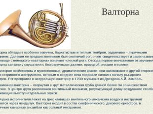 Валторна Валторна обладает особенно певучим, бархатистым и теплым тембром, за