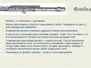 Флейта Флейта – от латинского – дуновение. Жизнь свою начала от простого камы