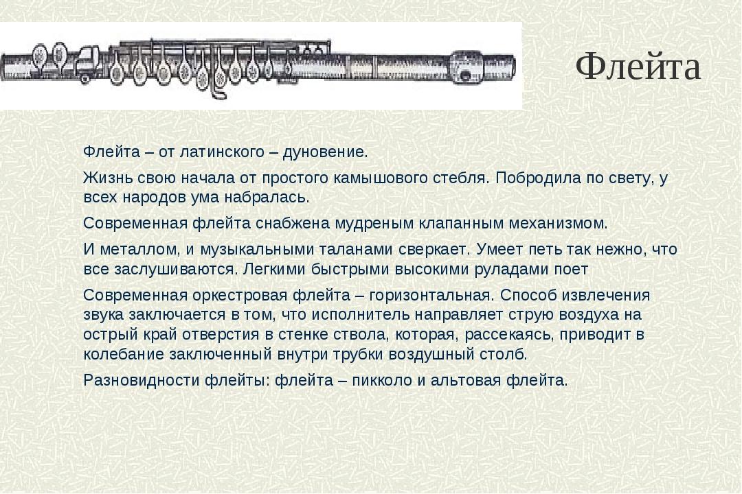 Флейта Флейта – от латинского – дуновение. Жизнь свою начала от простого камы...