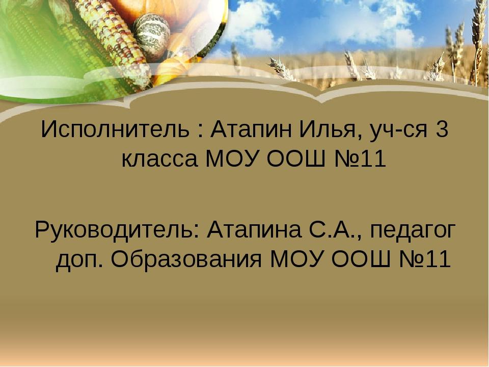 Исполнитель : Атапин Илья, уч-ся 3 класса МОУ ООШ №11 Руководитель: Атапина С...