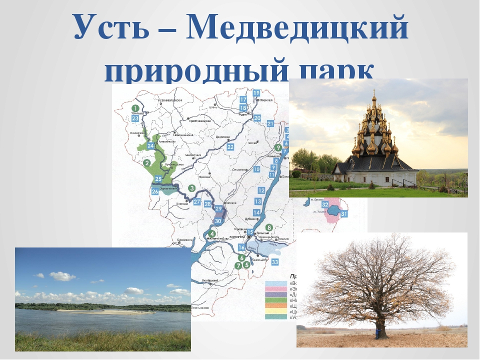 Усть – Медведицкий природный парк