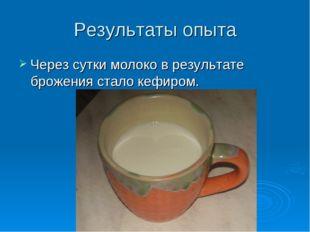 Результаты опыта Через сутки молоко в результате брожения стало кефиром.