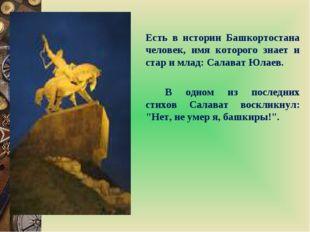 Есть в истории Башкортостана человек, имя которого знает и стар и млад: Сал