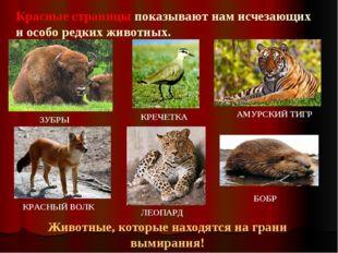 Красные страницы показывают нам исчезающих и особо редких животных. Животные,
