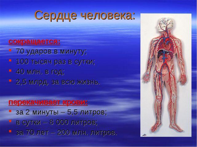 Сердце человека: сокращается: 70 ударов в минуту; 100 тысяч раз в сутки; 40 м...