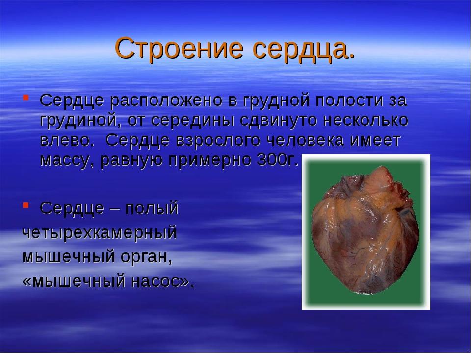 Строение сердца. Сердце расположено в грудной полости за грудиной, от середин...