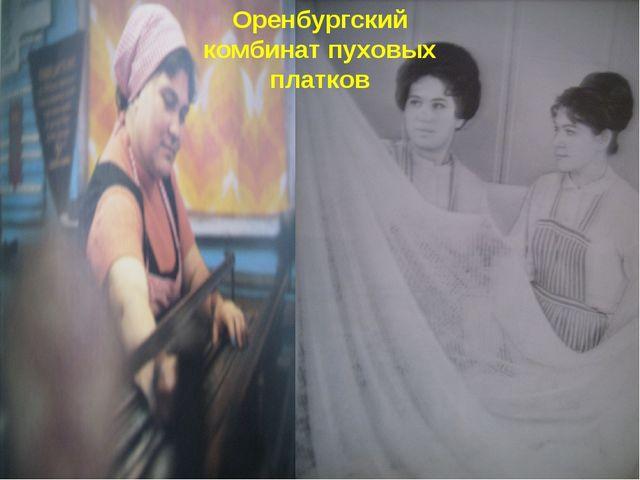 Оренбургский комбинат пуховых платков