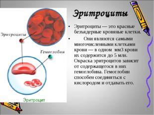 Эритроциты Эритроциты — это красные безъядерные кровяные клетки. Они являют