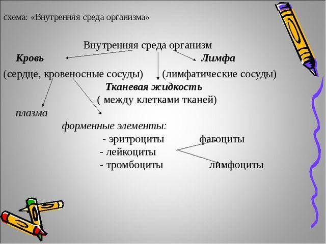 схема: «Внутренняя среда организма» Внутренняя среда организм Кровь Лимфа (се...