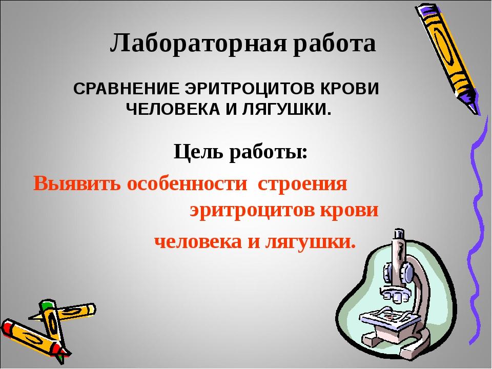 Лабораторная работа СРАВНЕНИЕ ЭРИТРОЦИТОВ КРОВИ ЧЕЛОВЕКА И ЛЯГУШКИ. Цель раб...