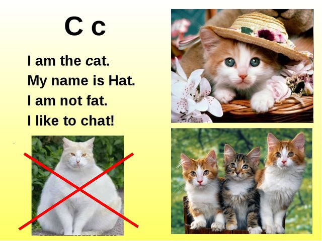 C c I am the cat. My name is Hat. I am not fat. I like to chat! http://images...