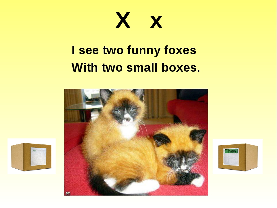 X x I see two funny foxes With two small boxes. http://1.bp.blogspot.com/-IhL...