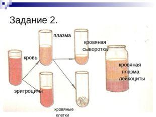 Задание 2. плазма кровяная сыворотка кровь кровяная плазма лейкоциты эритроци