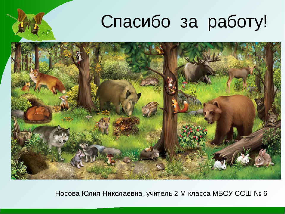 Спасибо за работу! Носова Юлия Николаевна, учитель 2 М класса МБОУ СОШ № 6