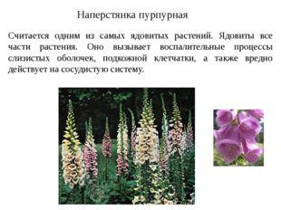 Наперстянка пурпурная Считается одним из самых ядовитых растений. Ядовиты все