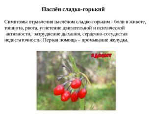 Паслён сладко-горький Симптомы отравления паслёном сладко-горьким - боли в жи